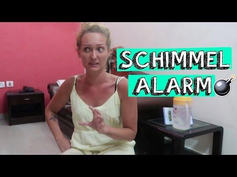 SCHIMMEL-ALARM