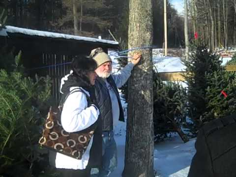 Maple Syrup Diplomacy--Yaroslavl Visitors at Morse Farm Sugarworks