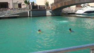 Amigo Alex pulando no Red Sea, Jeddah