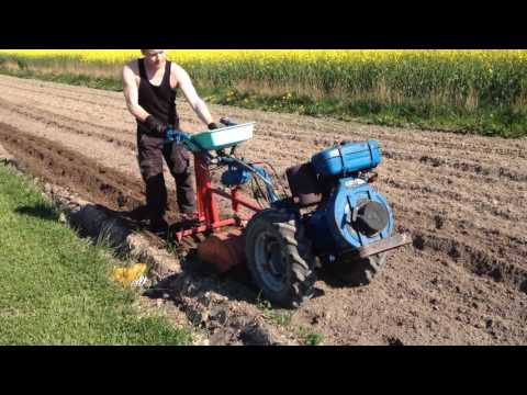 Nibbi AE 11 With homemade potato planter.  two wheel tractor