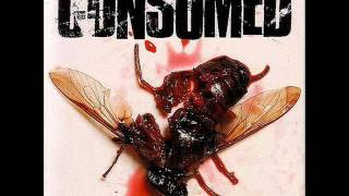 Watch Consumed King Kong Song video