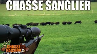 Chasse Au Sanglier - Compilation Saison 2013/2014