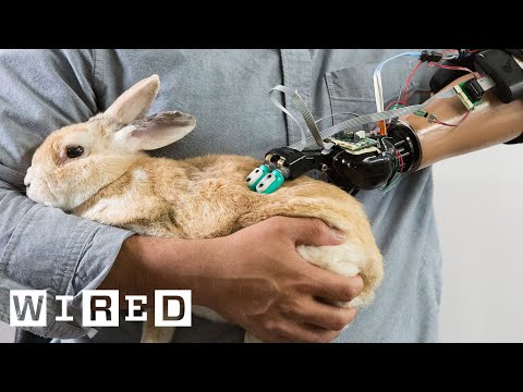 This Robotic Hand Can Touch and Feel, Just Like a Human Hand | Cyborg Nation