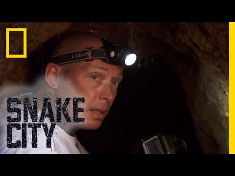Simon vs. Rock Python - Episode 2   Deadliest Snake Encounters