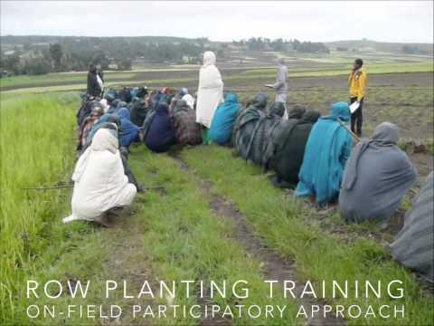 Travel Subsidy 2014 Logan Cochrane, Ethiopia