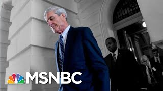 FOX News Host: Americans Care About Netflix And Sports, Not Mueller's Report | The 11th Hour | MSNBC