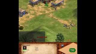 Age Of Empires All Villager Random Task