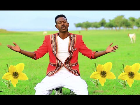 Tariku 80 Shele - Enkutataye  New Ethiopian Music 2015 (Official Video)