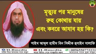 Mrittor Por Manuser Ruh Kothay Jay & Kobore Azab Hoy Ki?  Sheikh Abdul Hamid Siddik Salafi