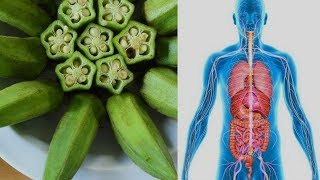 WOW AMAZING!!! AFTER EATING OKRA, This Is What Happens With Your Body!