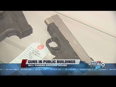 House backs bill allowing guns in public buildings