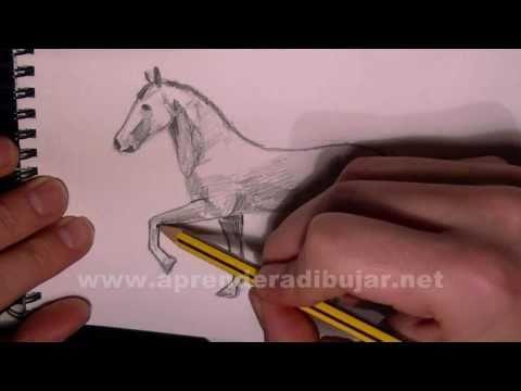 Dibujo de un caballo trotando paso a paso - Como dibujar animales a lapiz