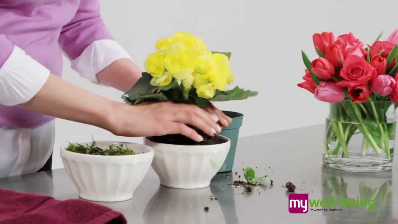 Easy Flower Arrangements Youtube