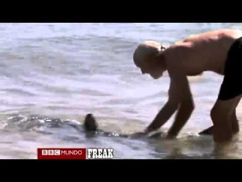 El hombre que se enfrentó con un tiburón. Heroe salva niños de mordida de tiburon.
