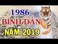 BÍNH DẦN 1986 Năm 2019 - Châu Hoàn Hợp Phố