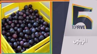 Top 5| توب5| الفرق بين الزيتون الطبيعي والتجاري