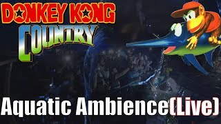 Aquatic Ambience - Donkey Kong Country (Live At Ñoñoparty 2) // Jazztick