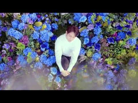 BEAST Butterfly music videos 2016
