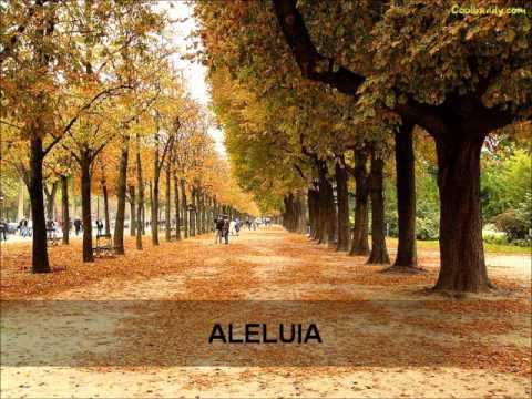 LOUVOR - GABRIELA ROCHA - ALELUIA