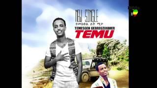 Temesgen Gebregziabher - Yemeskel Let Mata  የመስቀል ለት ማታ (Amharic)
