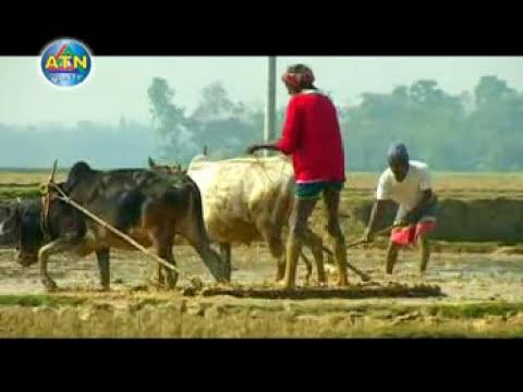 Amar Bangladesh......eva Rahman video