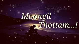 Moongil Thottam || Kadal Movie || WhatsApp Lyrical Status ||