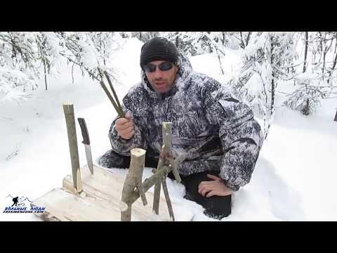 Как сделать капкан на зайца видео зимой
