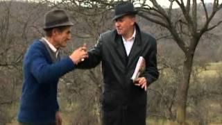 Puiu Codreanu - Eu primaru' de comună