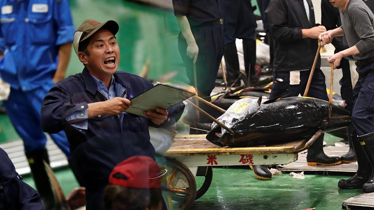 Tokyo's 'new Tsukiji' market springs into action