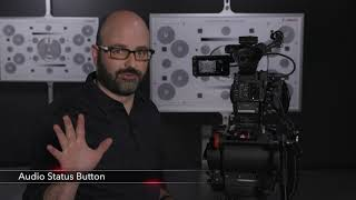 The Canon Cinema EOS C200 and C200B Video Training Series: Audio Setup