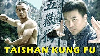 Wu Tang Collection - Taishan Kung Fu (Kung Fu from Tai Mountain) English Subtitled  from Wu Tang Collection