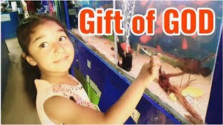 The Daughter is The Most Valuable Gift of GOD in Life !