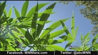 Medical Marijuana Arrives on Capitol Hill  5/10/13