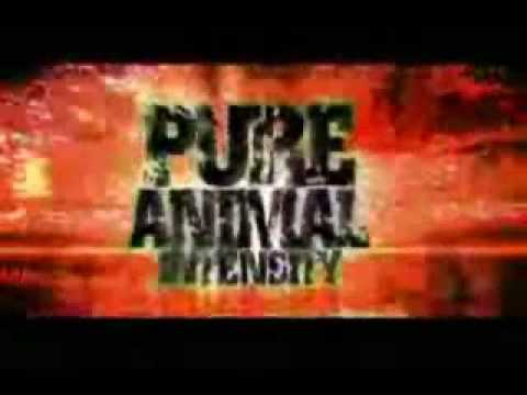 Dave Batista - Animal I have become