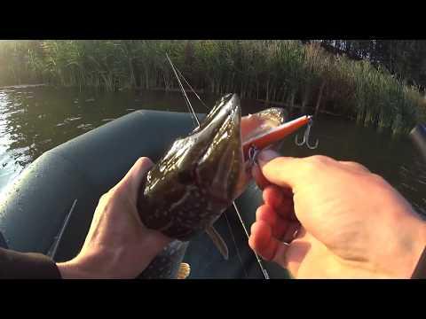 Ловля щуки осенью на воблер. Рыбалка на спиннинг 2017.