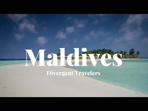 Travel Guide To Explore Maldives  With The Divergent Travelers