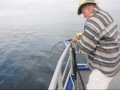 Sport Fishing Report  From Kodiak