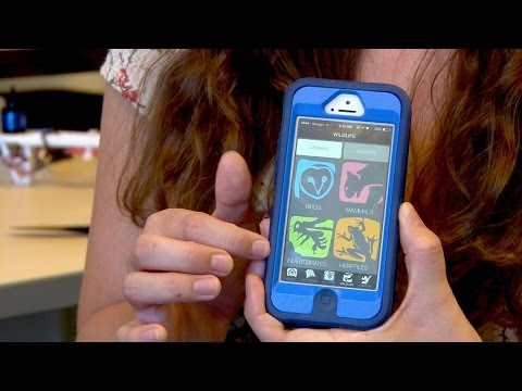 Saint Mary's College Students Create Mobile App For Lindsay Wildlife Museum video