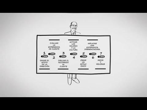 ¿Conoces los 7 pasos para mejorar la Experiencia de Cliente?
