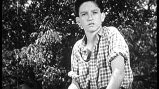 Rolling Home (1946) WESTERN