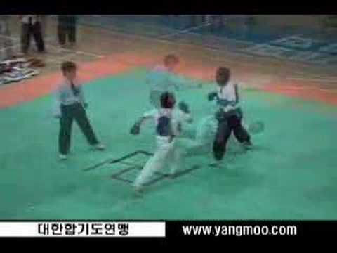King of Hapkido Image 1
