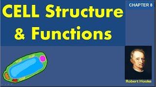 Cell structure and function - CBSE Class 8 Chapter 8 explanation and question answers