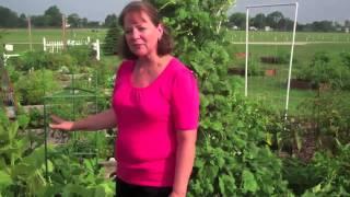 The Scotts Miracle-Gro Associate Gardens