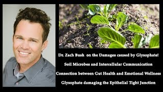 Dr. Bush | Tight Junction | Dangers Glyphosate
