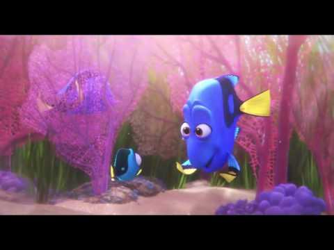 Pixar's Finding Dory: Wanna Play Hide and Seek? Movie Clip - Ellen Degeneres