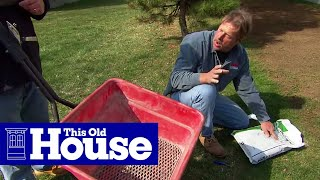 How to Revive a Brown Lawn