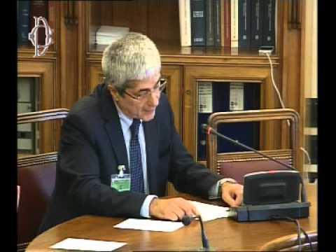 Roma - Audizione Federutility (30.07.14)