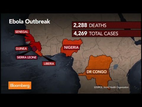 Ebola Virus Fight: Is Action Too Little, Too Late?