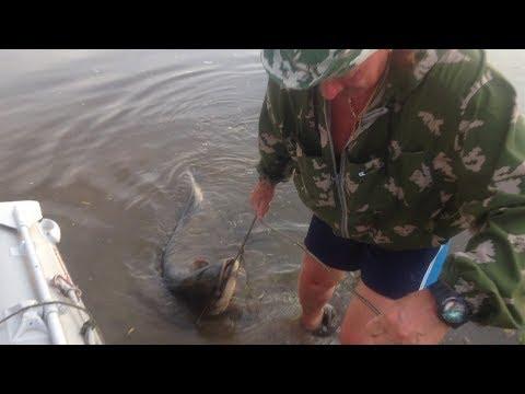 видео рыбалка в астрахани в октябре