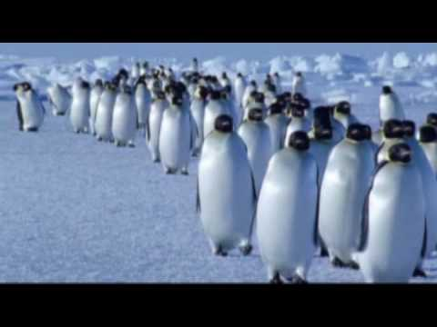 Vangelis - Vangelis - Theme from Antarctica
